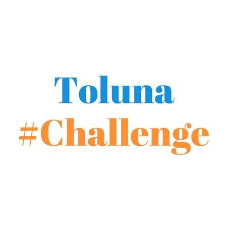 toluna challenge.jpg
